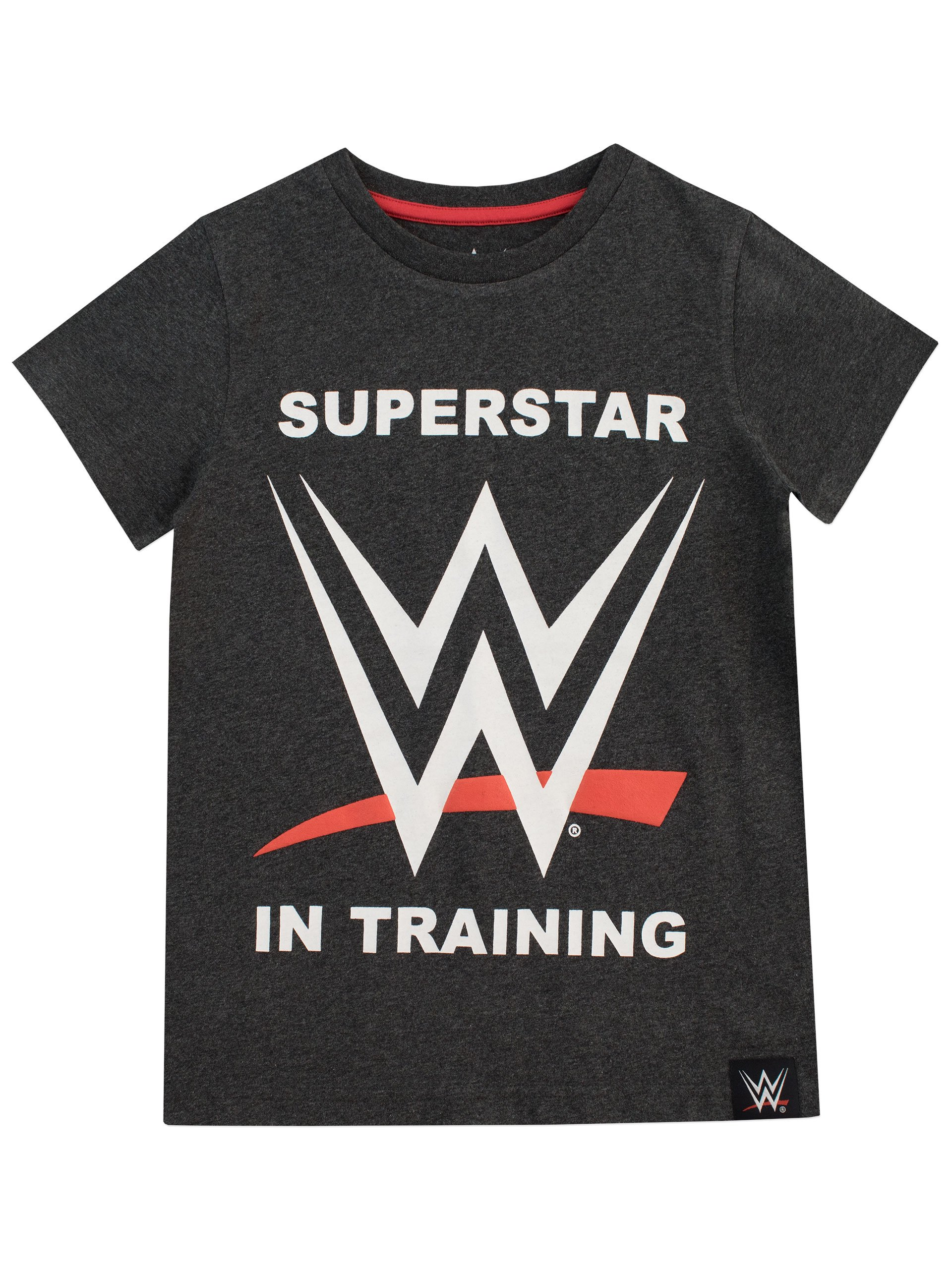 WWE Boys' World Wrestling Entertainment T-Shirt Size 7 Grey by WWE