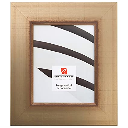 Amazon.com - Craig Frames 2251100 12 by 36-Inch Picture Frame ...