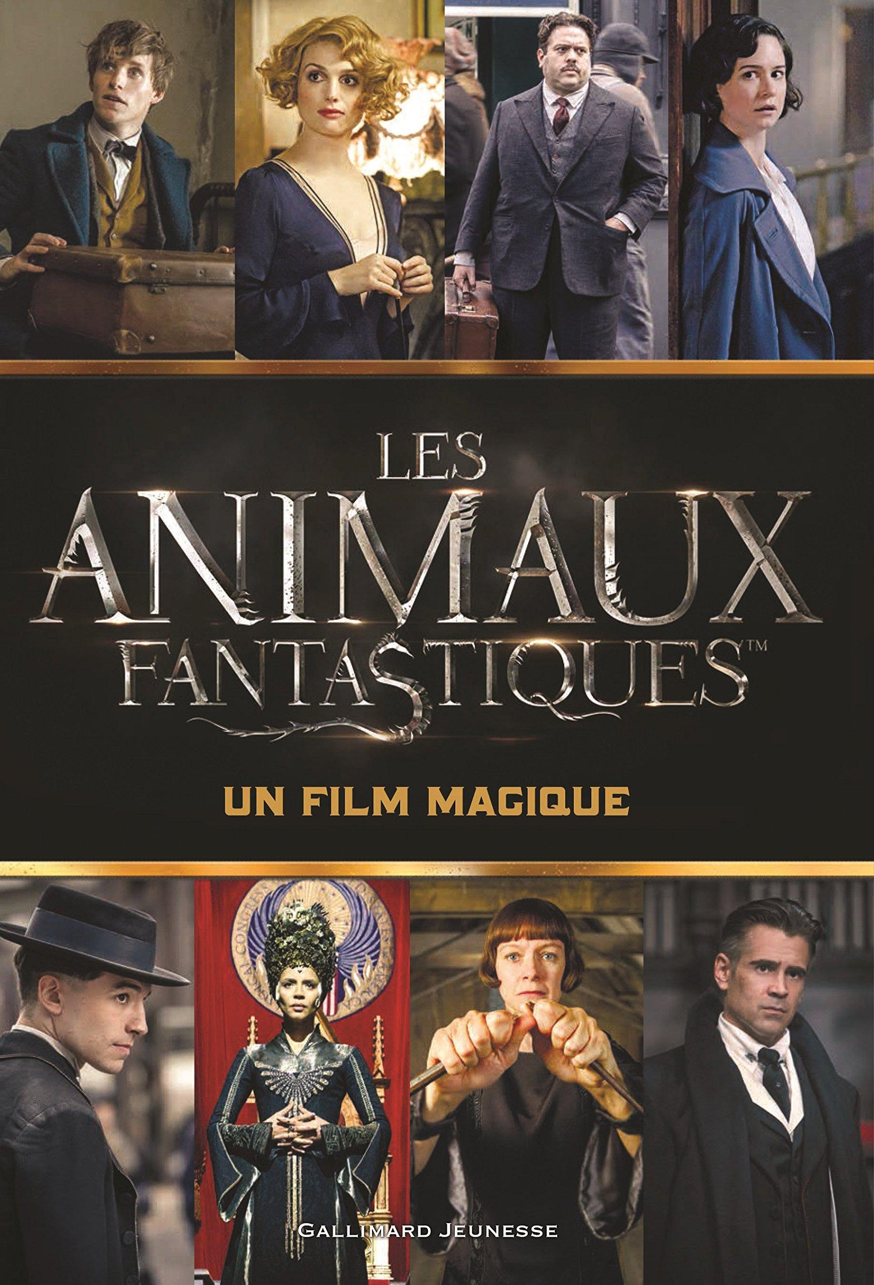 Amazon Fr Les Animaux Fantatistiques Un Film Magique