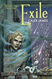 Exile (The Haffling Book 2)