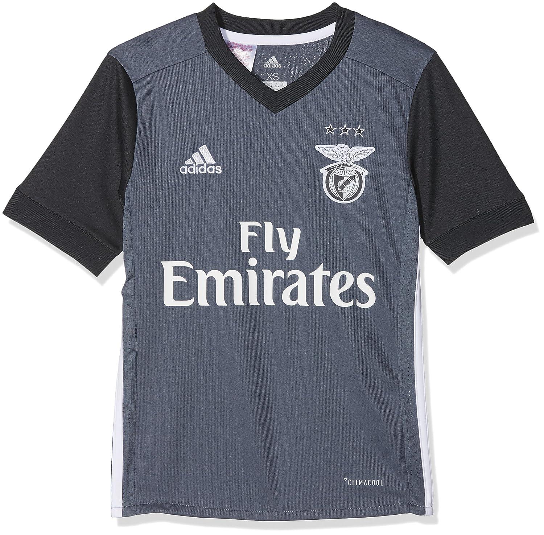 Adidas Benfica 2017-2018 2017-2018 2017-2018 a JSY Y, Maglietta Bambino, Grigio (Onix Griosc), 140   prendere in considerazione    Gioca al meglio   Di Qualità Superiore    Materiali Di Qualità Superiore    Conveniente  8262b1