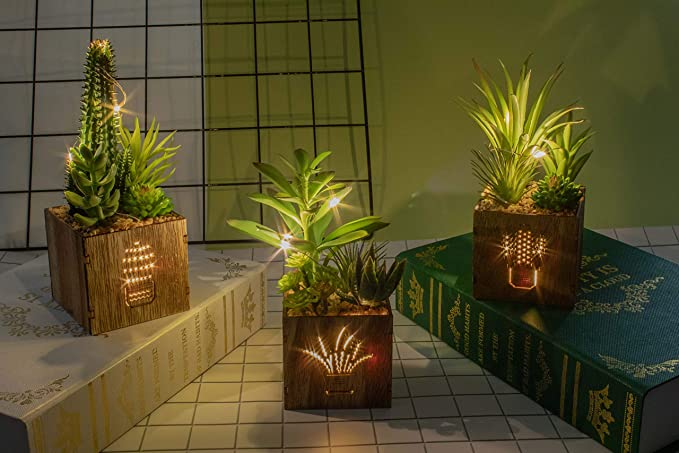 Artificial Succulents with Led Lights in Wooden Box For Home/Office Decorations, Pack of 3 set