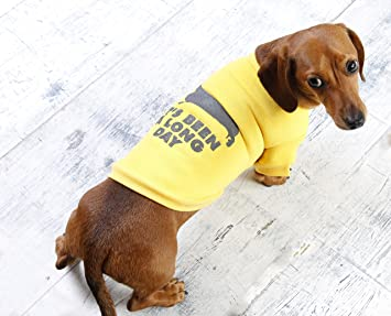 Image of: Death Image Unavailable Amazon Uk Sausage Dog Puppy Jumper Jumper For Small Dachshunds Clothing