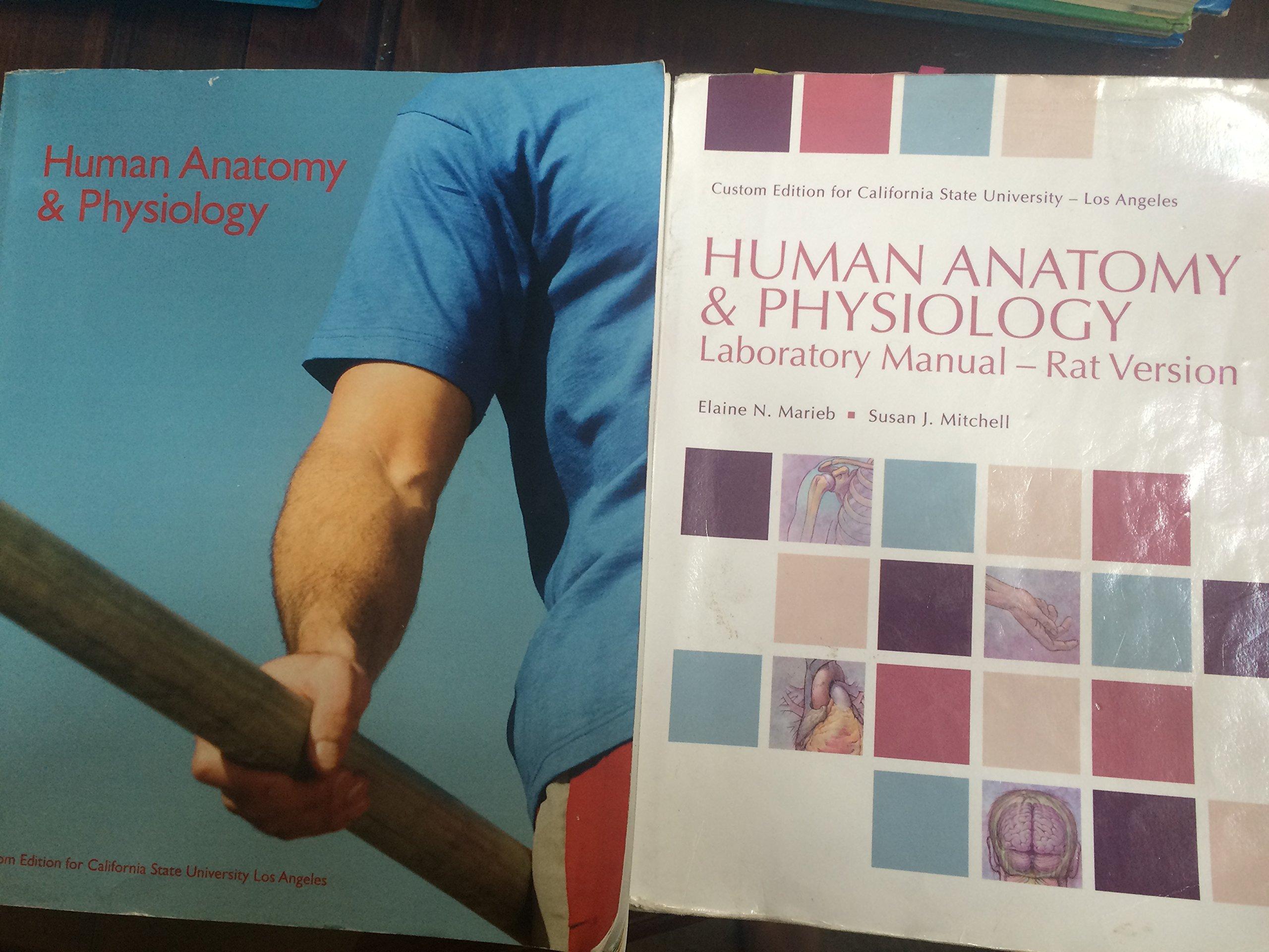 Human Anatomy and Physiology Custom Edition for Csula: elaine n ...