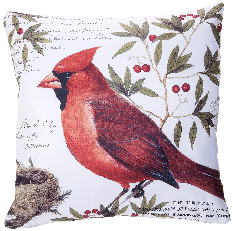 accrocnスロー枕カバーモダンマルチカラーヴィンテージ鳥冬Cardinal Handdrawn Paintingクッション装飾枕カバー18 x 18インチポリエステル正方形枕カバー隠しファスナー付き   B075CG8Y8F