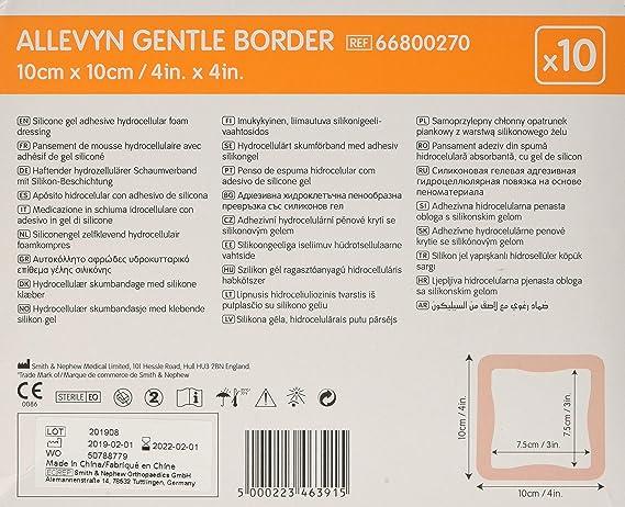 Allevyn Gentle Border 10 x 10 10: Amazon.es: Salud y cuidado ...