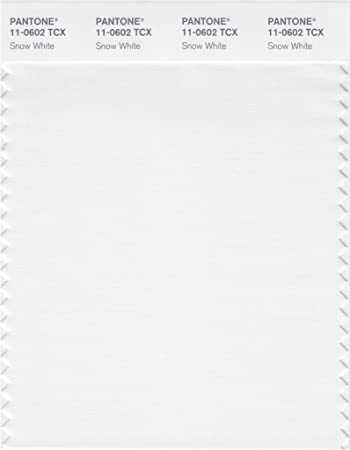 Pantone Smart 11 0602x Color Swatch Card Snow White House Paint Amazon Com