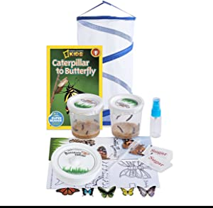 Nature Gift Store Live Butterfly Growing Kit: Shipped with 10 Live Caterpillars Now, Pop-Up Cage, Book and Stickers Bundle