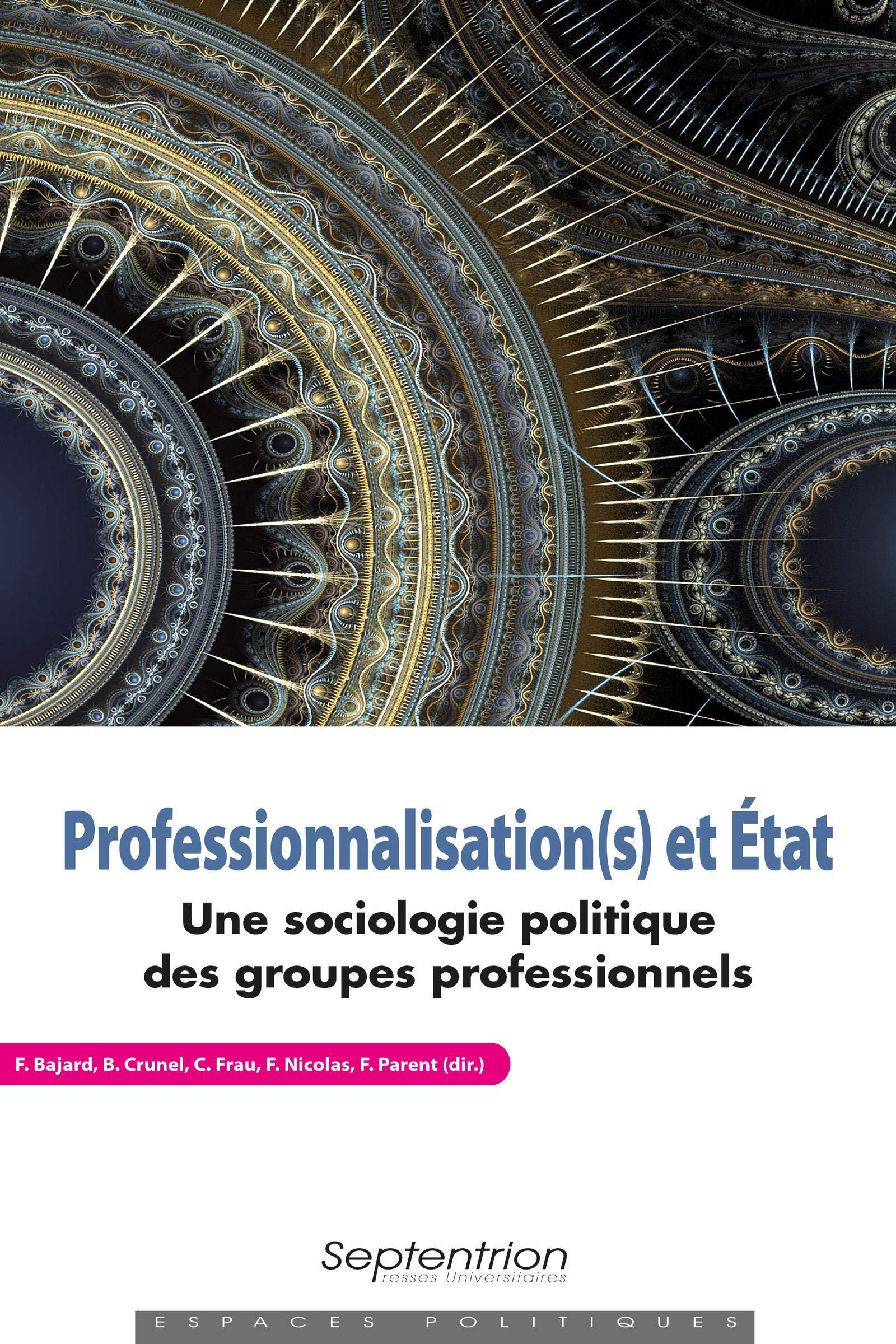 Amazon Fr Professionnalisation S Et Etat Une Sociologie