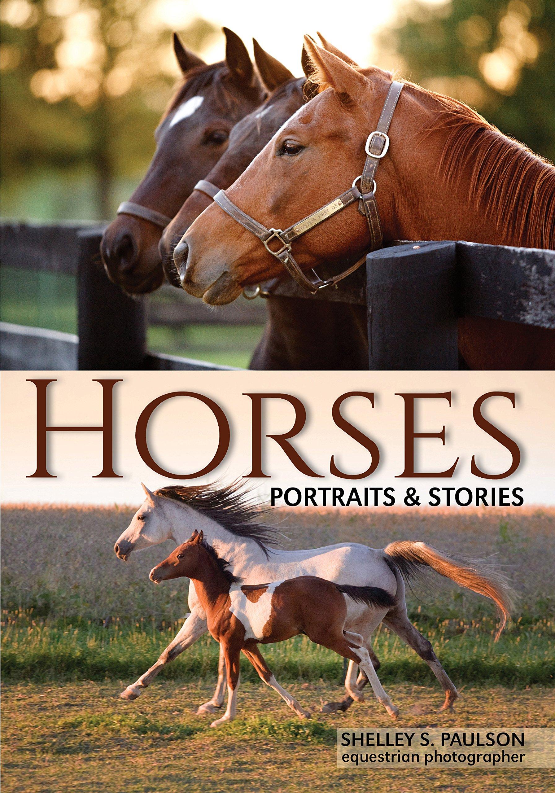 Download Horses: Portraits & Stories PDF