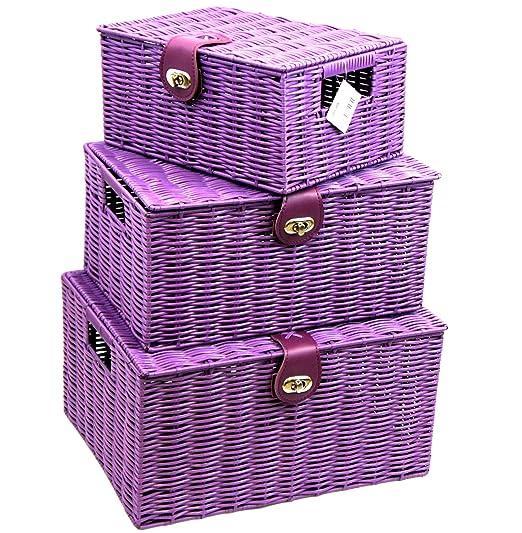 Arpan - Juego de 3 cajas de almacenaje de resina con tapa y candado, color morado: Amazon.es: Hogar