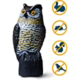 Livin' Well Bird Pest Control Products Scarecrow Owl Decoy w/ Light-Up Owls Eyes & Sounds - Solar-, Motion-Activated Pest Repellent/Deterrent Will Scare Squirrel, Birds & Rodents