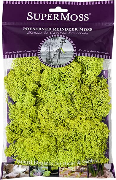 Moss Mix Preserved 2oz 23310 SuperMoss 110 Cubic Inch