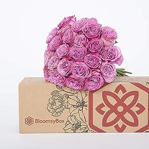 Beautiful Bouquets Subscription: Long Stem Roses