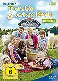 Tiere bis unters Dach - Staffel 1 [2 DVDs]