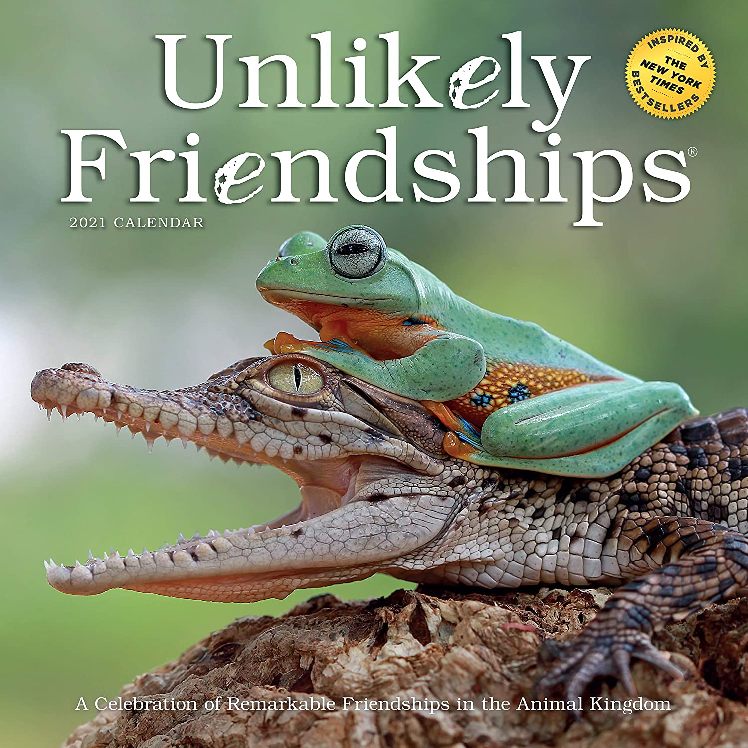 """Unlikely Friendships Wall Calendar 2021 [12"""" x 12"""" Inches]"""