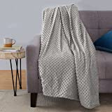 "Amazon Basics Weighted Blanket with Minky Duvet Cover - 15lb, 48x72"", Dark Grey/Grey"