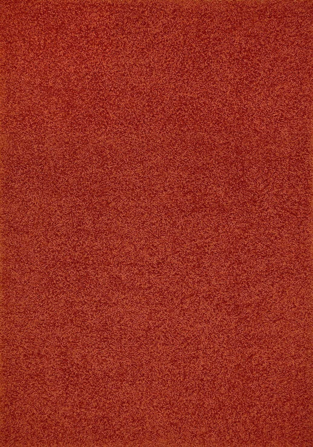 Cool Home New Shag Collection Area Rugs Rust, 8 W x10 L