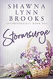 Stormsurge (Shepherdsville Book 1)