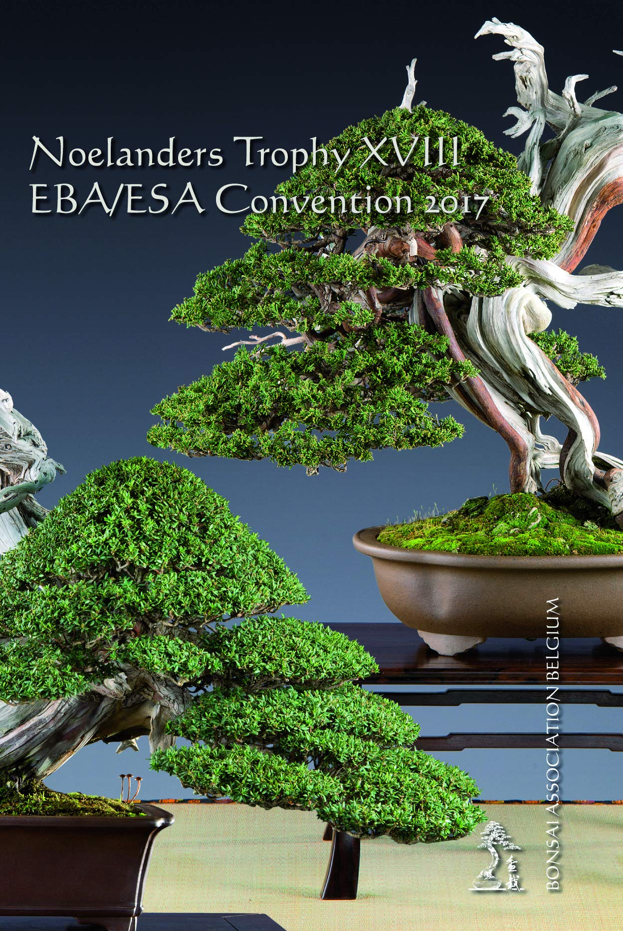 Noelanders Trophy Xviii Amazon De Alda Clijsters Christian Vos Bonsai Association Belgium Willy Evenepoel Bucher