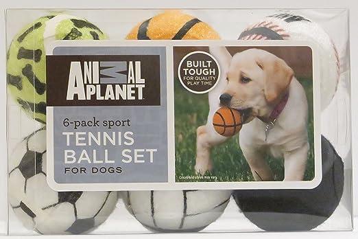 Animal Planet 6-Pack Sport Juego de Pelota de Tenis para perros: Amazon.es: Productos para mascotas