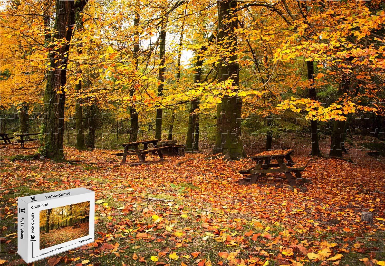 大特価放出! PigBangbang -、34.4 X 22.6インチ PigBangbang、34.4、堅い木製箱に入った有名な絵画、明るくカラフル- 秋の公園の森の木、赤い葉のベンチ B07GTRN4HP - 1500ピースのジグソーパズル B07GTRN4HP, アットスポット:ca99116f --- a0267596.xsph.ru