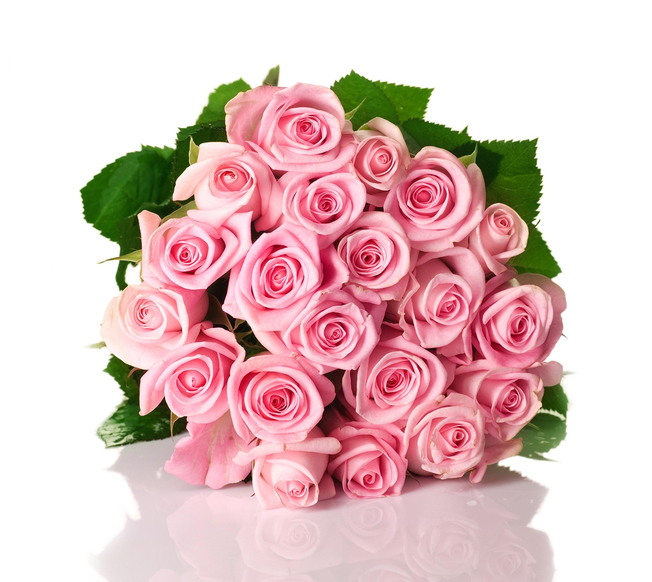 Amazon Globalrose 50 Fresh Cut Pink Roses Long Stem Flower