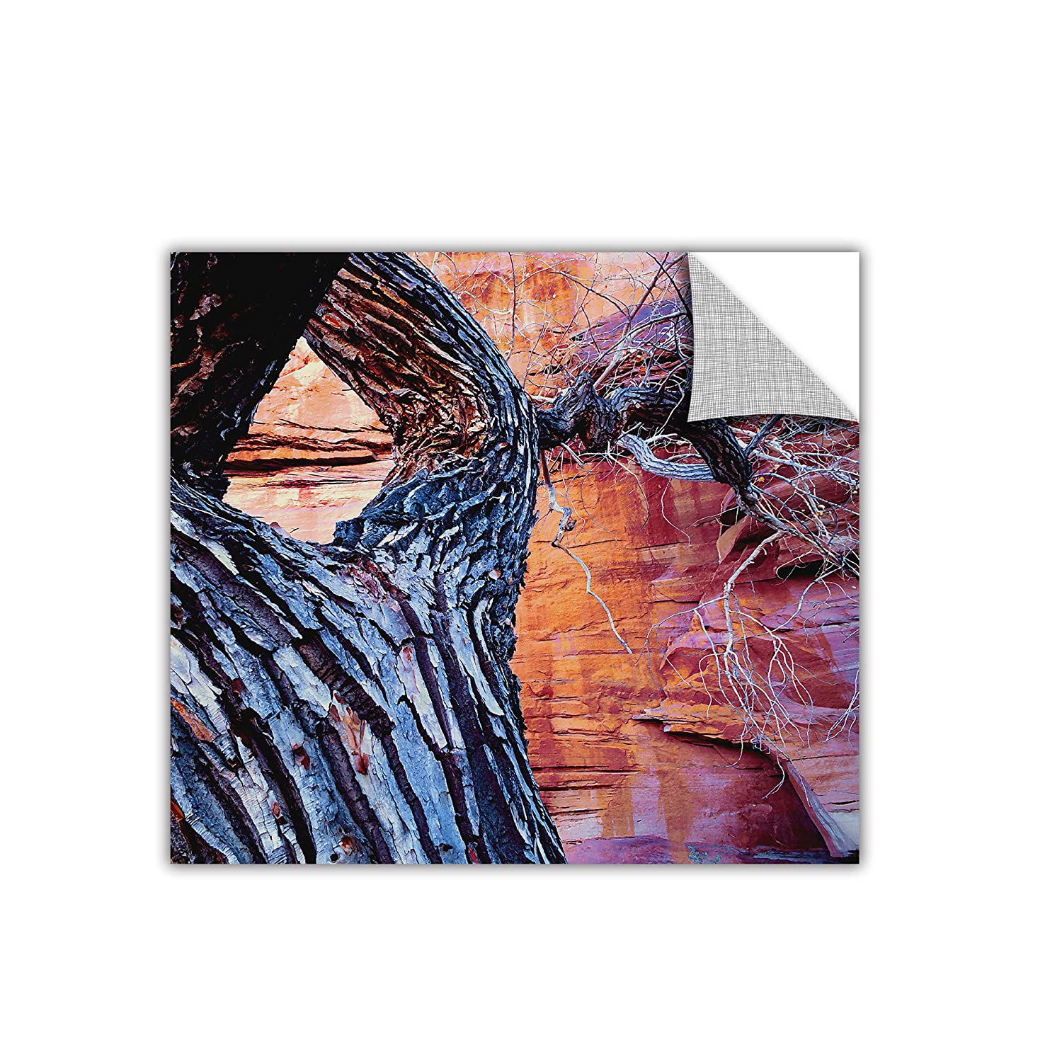 ArtWall In The Escalante Removable Wall Art by Dean Uhlinger 24 by 24-Inch
