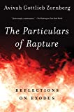 The Particulars of Rapture: Reflections on Exodus