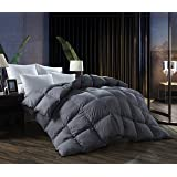 Down Comforter King All Season Duvet Insert,Comforter with Down Proof Fabric,700 Fill Power,Grey(106x90inches)