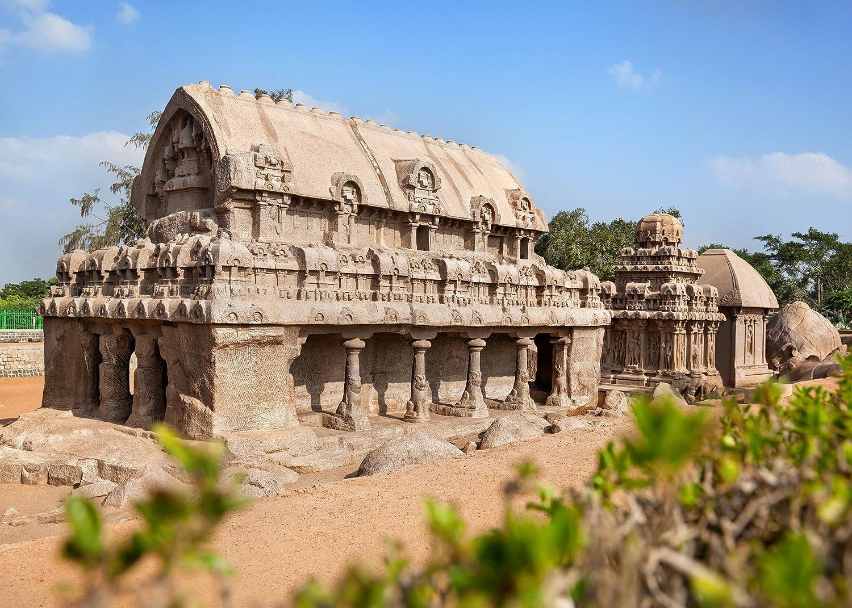 Amazon com : LYLY COUNTY 10×7 FT Tamil Nadu Culture Photography