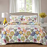 Travan Bedspread Quilt Set 3-Piece Lightweight Coverlet Set with Shams Reversible Quilted Bedding Set for All Season, Colorfu
