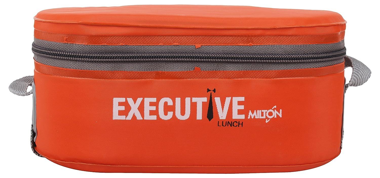 22f657dbe88b2c Buy Milton Executive Plastic Lunch Box