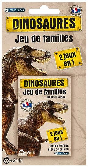 France Cartes 404541-Juego de Cartas de Las familias ...