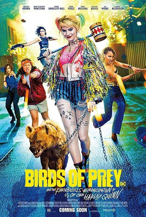 Amazon Com Gzsgwli Birds Of Prey Movie Harley Quinn Print 24x36 Inch 60 96x91 44cm Art Poster Home Kitchen