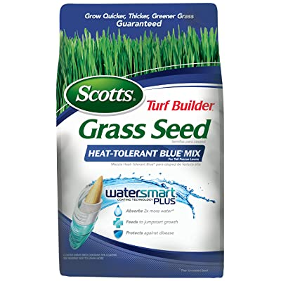 Scotts 18302 Turf Builder Heat Tolerant Blue Mix Grass Seed (4 Pack), 7 lb : Garden & Outdoor