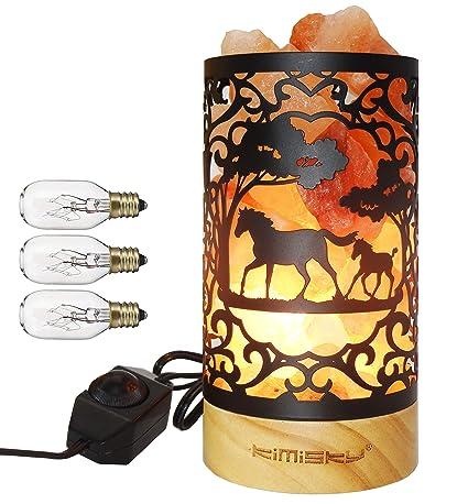 Amazon.com: Lámpara de sal del Himalaya Kimisky, diseño de ...