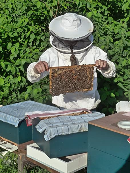 Miel cruda de ImkerPur, 1 kg, sin filtrar, no centrifugada o ...