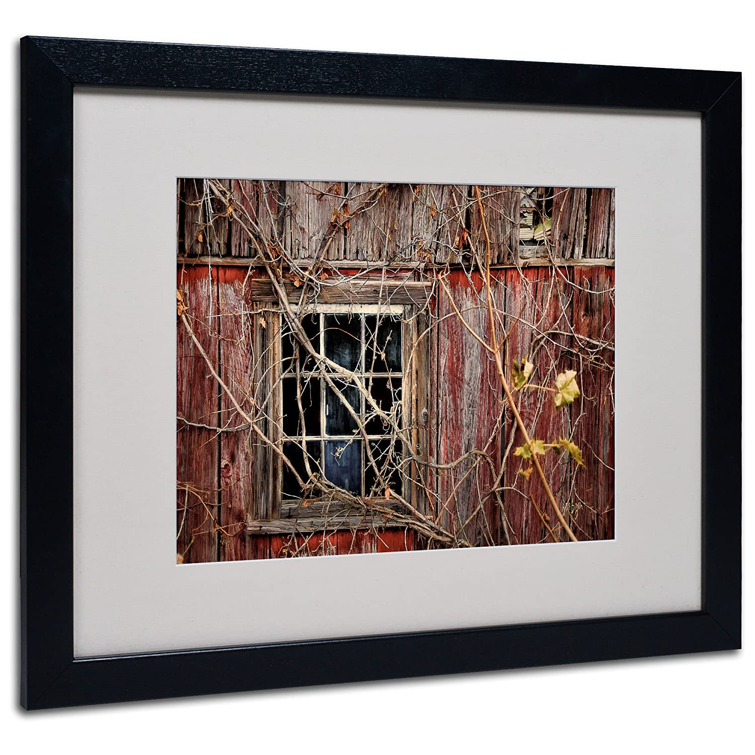 11 by 14-Inch Trademark Fine Art Old Barn Window Matted Framed Art by Lois Bryan with Black Frame