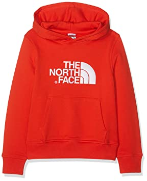 The North Face Drew Peak Sudadera con Capucha, Niño: Amazon.es: Deportes y aire libre