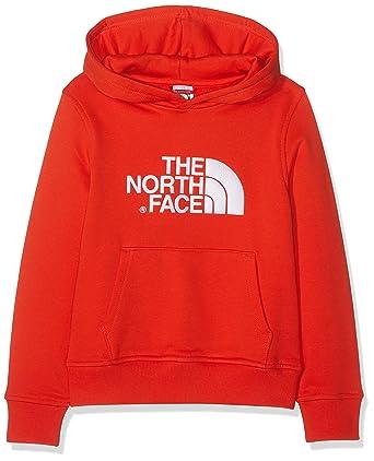 Clothing THE NORTH FACE Childrens Drew Peak Hoodie