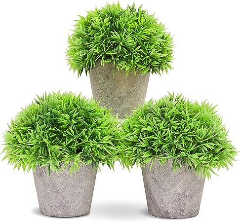 Piante Da Appartamento Piccole.Juvale Piccole Piante Da Appartamento Artificiali In Vaso Set Da
