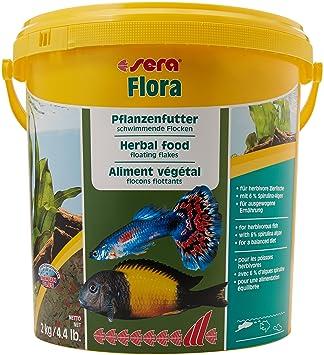 Sera Flora - Copos verdes - Inhalación 2 kg / 10 litros: Amazon.es: Productos para mascotas