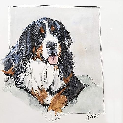 Amazoncom Framed Original Bernese Mountain Dog Art Handmade
