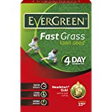 EverGreen 450 g Fast Grass Lawn Seed Carton