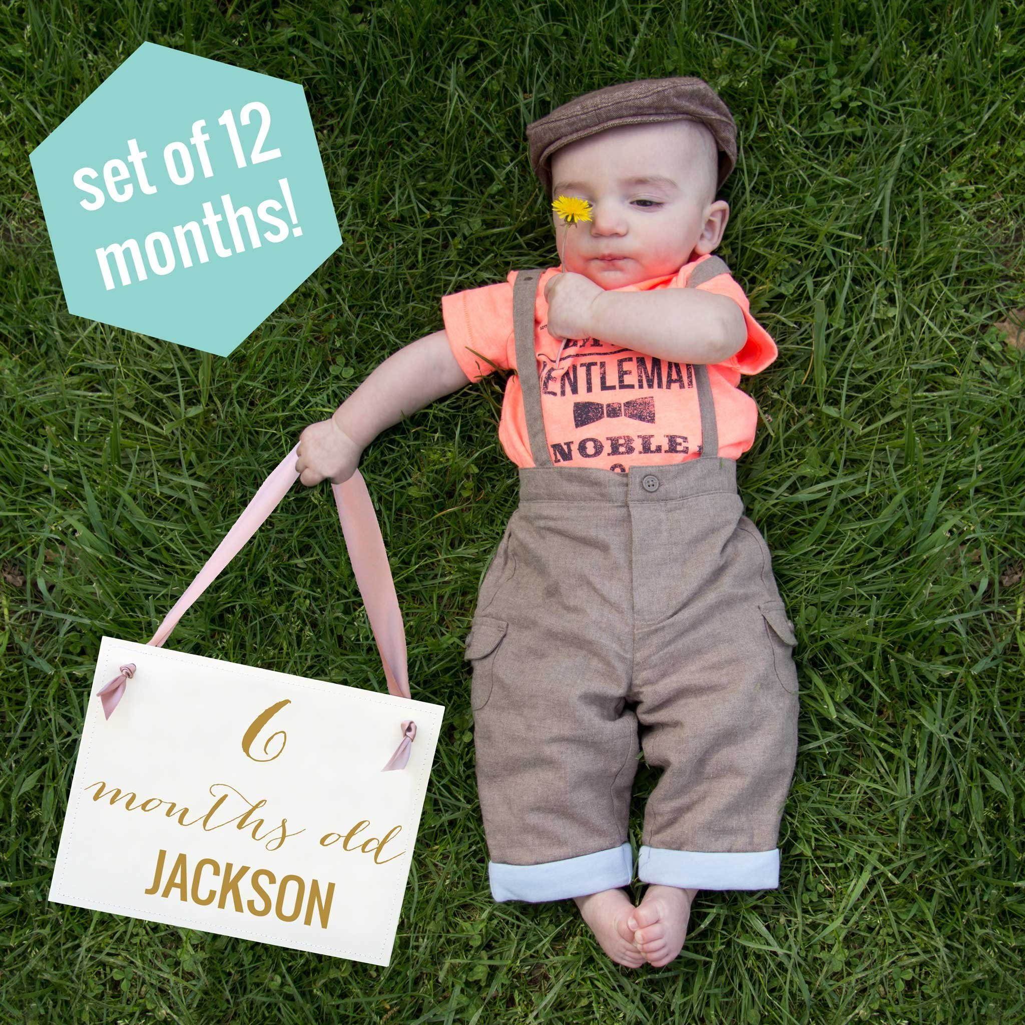 Monthly Banners for Baby Pictures 1 Month - 1 Year (set of 12) Personalized
