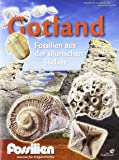 """Fossilien Sonderheft """"Gotland"""": Fossilien aus der silurischen Südsee"""