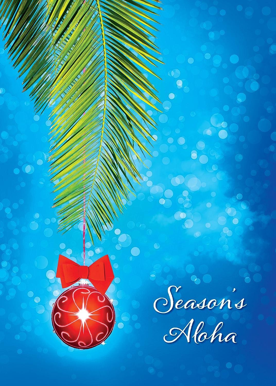 Amazoncom  Hawaiian Christmas Cards 12  Hawaiian Christmas