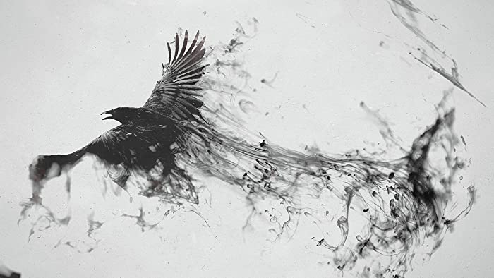Amazon Com Framed Abstract Raven Canvas Wall Art Decoration