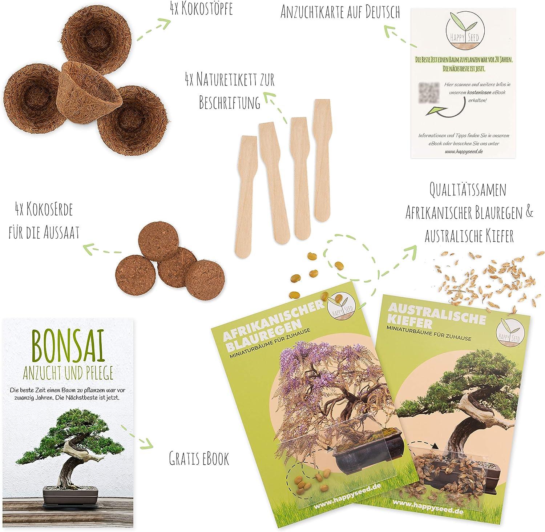 Bonsai Kit incl. eBook GRATUITO - Set con macetas de coco ...